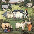 COW PROTECTION, INDIAN PAINTING.