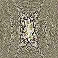 4.19.07 048 fractal 2