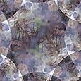 3.03.07 021 fractal