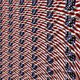 American-Flag fractal