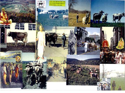Flyer collage 2_r1