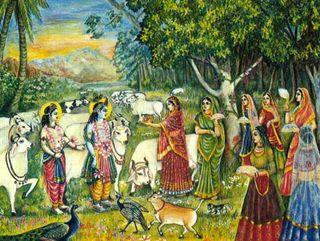 Brahmin-wives