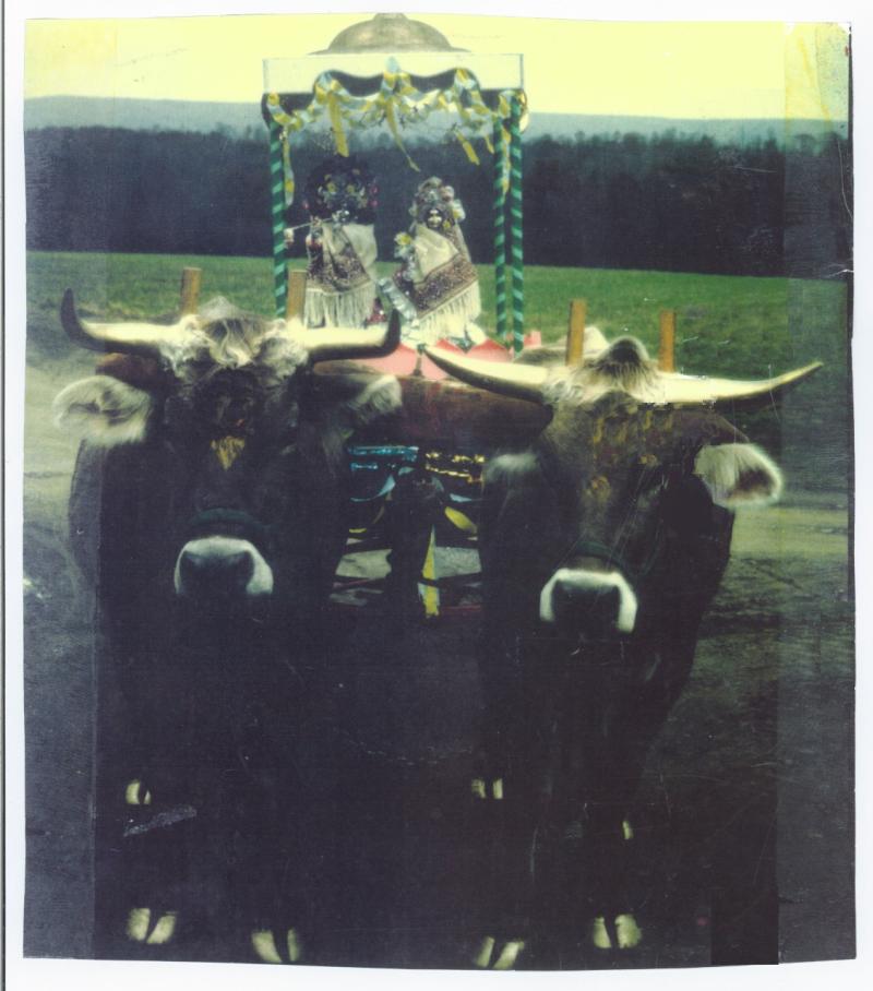 Thumbnail_GN ox cart deities