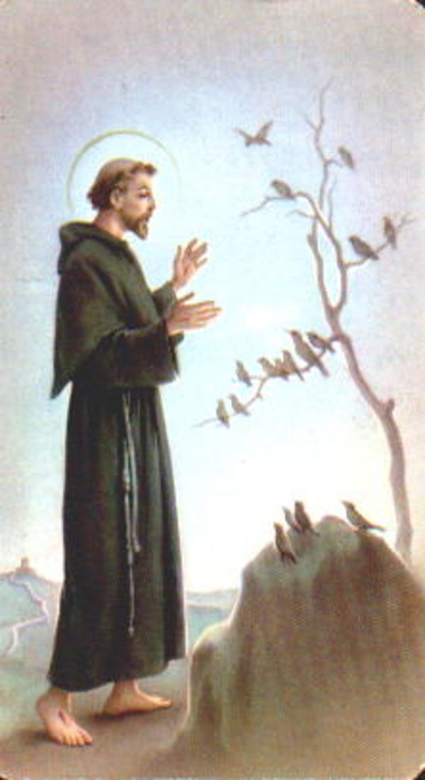St_francis_2