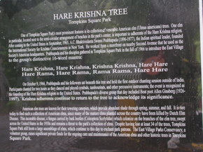 Tree_plaque