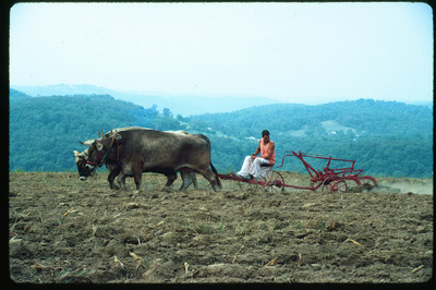 Vaisnava_plowing_in_the_hills