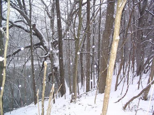Snow_scene_gita_nagari
