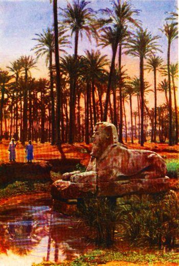 EGYPT 033