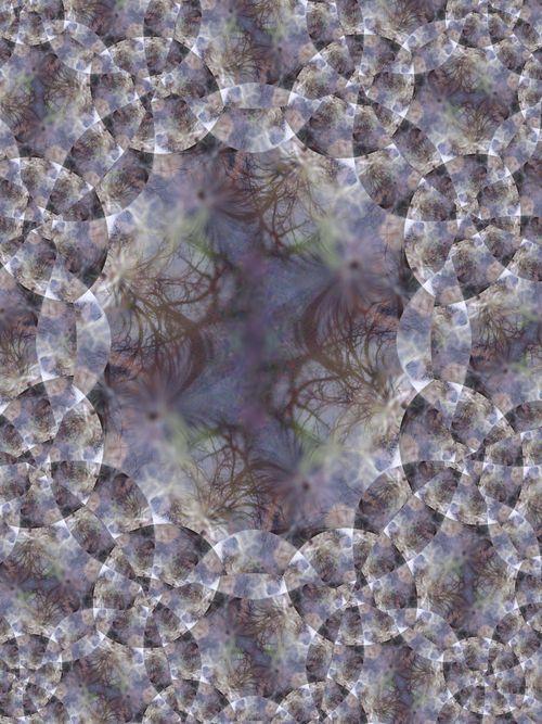 3.03.07 021 fractal 2