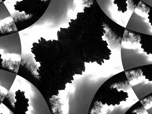 3.03.07 052 fractal