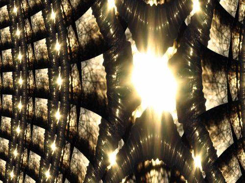 3.08.07 061 fractal