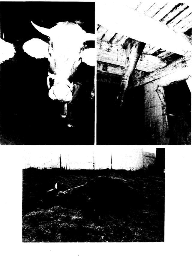 Gita_nagari_farm_report_001