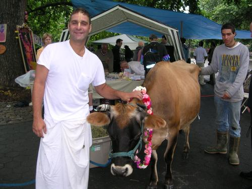 Rasala_cow