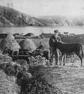 ACHILL ISLAND, WESTERN IRELAND.